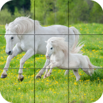 [APK] Puzzle – Beautiful Horses 1.24 (MOD Unlimited Money)