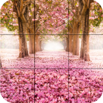 [APK] Puzzle – Beauty Of Nature 1.25 (MOD Unlimited Money)