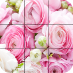[APK] Puzzle – Colorful Photo 1.19 (MOD Unlimited Money)