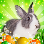 [APK] Hidden Object: Easter Egg Hunt 1.1.39b (MOD Unlimited Money)