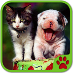 [APK] Cats And Dogs Games 5.22.020 (MOD Unlimited Money)
