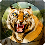 [APK] Forest Animal Hunting 2018 – 3D 1.2.4  (MOD Unlimited Money)