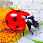 [APK] Insect Jigsaw Puzzles Game – For Kids & Adults 🐞 25.2 (MOD Unlimited Money)