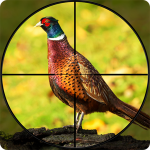 [APK] Pheasant Shooter: Crossbow Birds Hunting FPS Games 1.1 (MOD Unlimited Money)