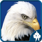 [APK] Birds Jigsaw Puzzles Game 1.9.17 (MOD Unlimited Money)
