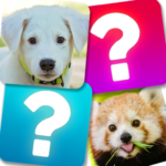 Memory Game: Animals 5.1 (MOD Unlimited Money)