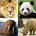 Animals Quiz – Learn All Mammals and Dinosaurs! 3.3.0 (MOD Unlimited Money)