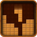 Wood Block Puzzle Play  (MOD Unlimited Money)